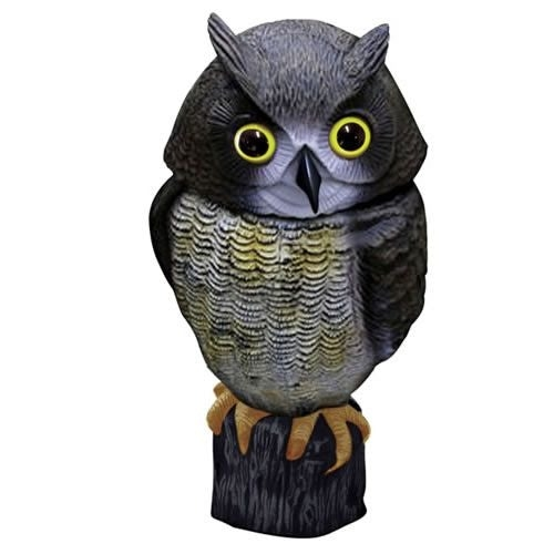 Action Fake Owl Plastic Bird Scarer Is A Plastic, Life Like Decoy For  Effective Repelling, Deterring, Stopping And Getting Rid Of Nuisance Birds  In Your ...