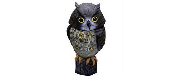 Action Fake Owl Plastic Bird Scarer