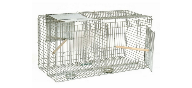 Larsen Bird Cage Trap